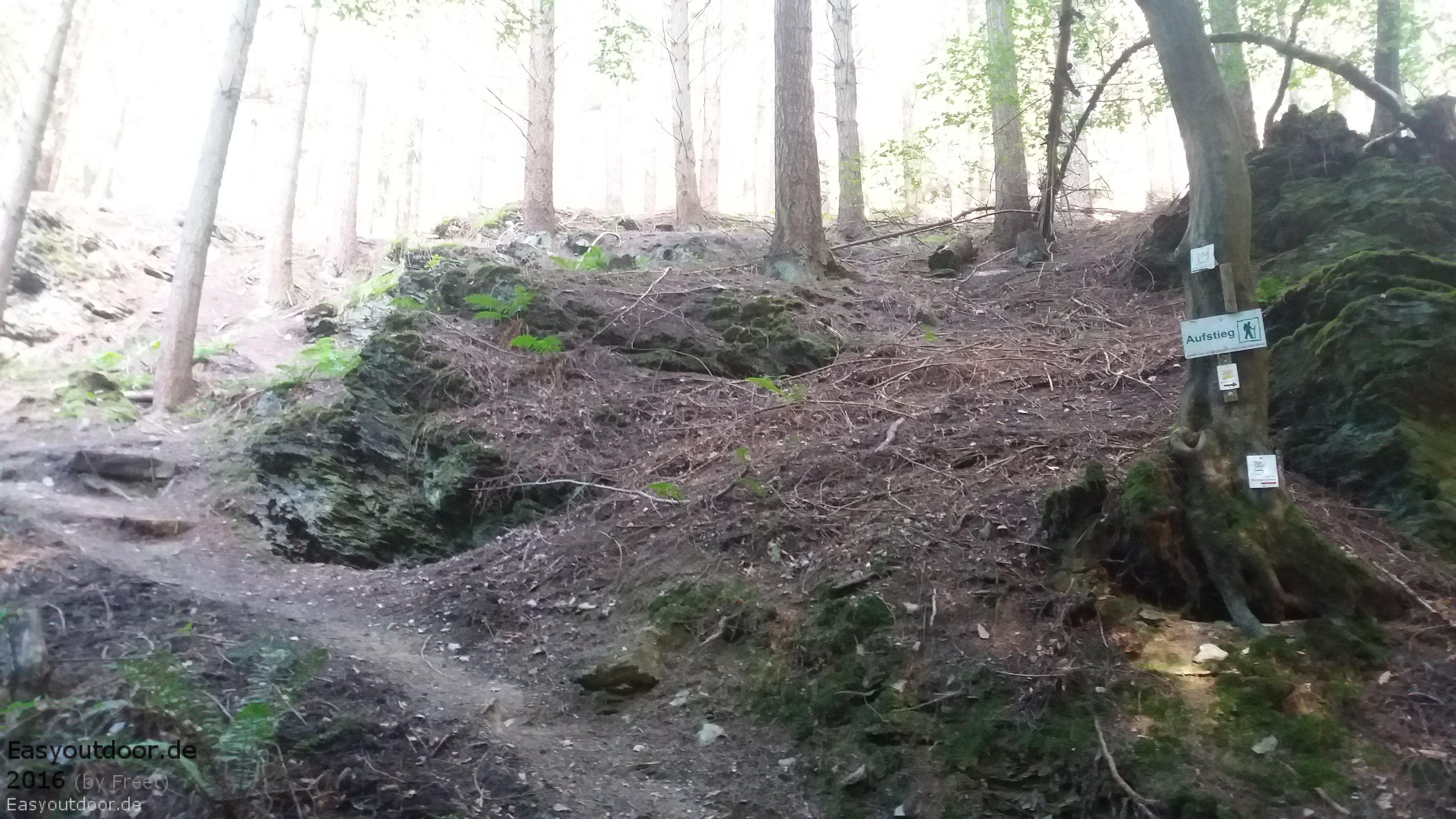Klettersteig Riol : Klettersteig riol mehring unterwegs ist zuhauseu